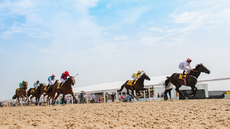 Northumberland Plate Day at Newcastle Racecourse