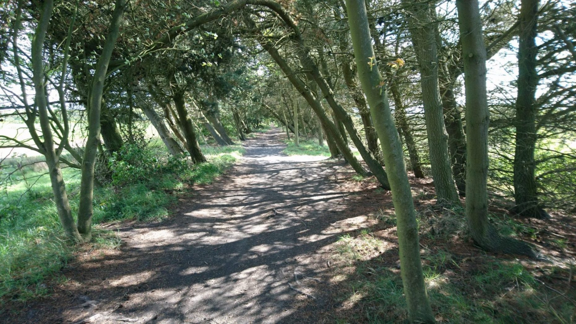 Waggonways and Cycle Routes